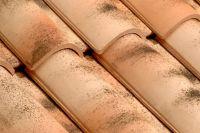 Dachówka ceramiczna Imerys Plein Sud  Mediterranea
