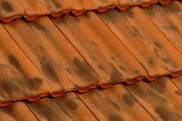Dachówki ceramiczne Imerys Delta 10 Vieilli Nuancé Sur Fond Rouge