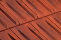 rhona-10-rouge-nuance70835F39-42E1-3C2F-2DC1-CE81B88A89C3.jpg