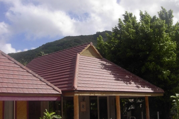 Dachówka ceramiczna ALPHA 10 Ste Foy- Rouge Ancien