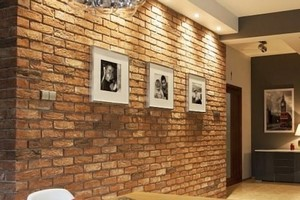 Cegły i płytki ceglane Nelissen do wnętrz i na elewacje | Zamara