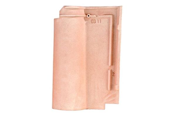 romane-rose-flamme9F1AC14D-232E-A416-5B41-86CBAF3B769E.jpg