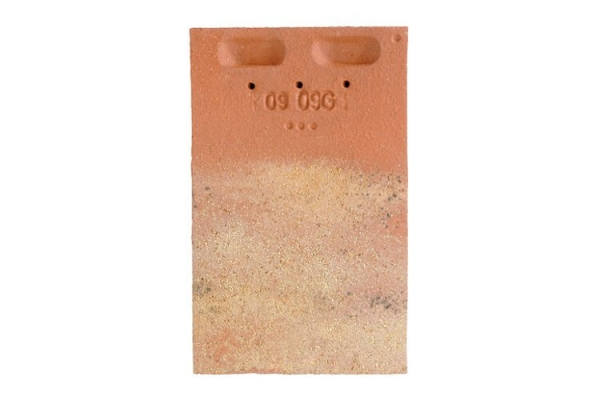 Dachówka ceramiczna PLATE PRESSE 17X27 - Terre de Beauce | Edililians-Zamarat